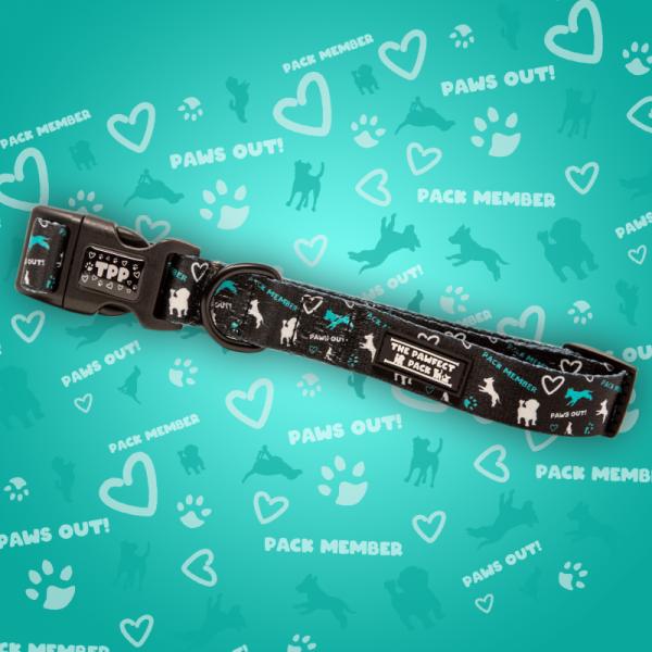 Team Spirit Dog Collar